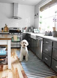 Rugs Kitchen Catchy White Kitchen Rugs Kitchen Rug Design Ideas Envialette