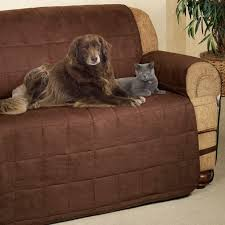 Throw Covers For Sofa Pet Throws For Sofas Uk Centerfieldbar Com