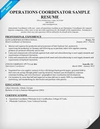 Sales Coordinator Sample Resume by Group Coordinator Resume