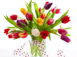 Flower Pictures 30 Beautiful Flower Images Free To Download Flowers Flower