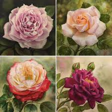 roses for sale violet painting doris joa watercolor paintings