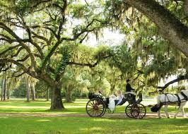 plantation wedding venues part i lowcountry plantations a lowcountry wedding