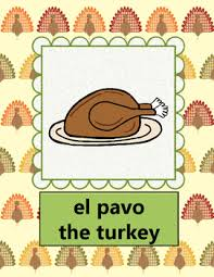 comida thanksgiving abuela rosa book flash cards