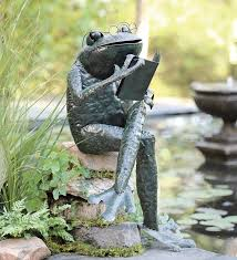62 best frogs images on frogs garden and garden ideas