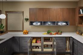 kitchen cabinets wall extension roll out shelves and tray divides cabinets