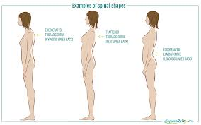 how to lengthen your spine without strain sequence wiz