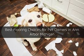 types of flooring for pet owners in arbor mi
