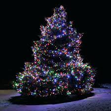 Prelit Outdoor Christmas Trees Outside Christmas Trees S Out Walmart Pre Lit Near Me Real Barcana
