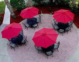 book hilton garden inn tampa north busch gardens tampa hotel deals