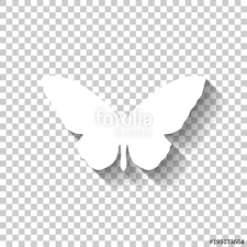 butterfly icon white icon with shadow on transparent background