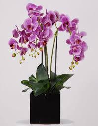 silk orchids silk flower arrangement silk orchids lend themselves to inside