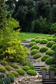 25 best garden images on pinterest landscaping gardening and