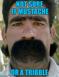 Mustache Guy Meme - someone needs to get this guy some wahl clippers for his birthday