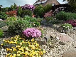 Rock Garden Society 11 Best Alpine And Rock Gardening Images On Pinterest Alpine