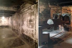 les chambres à gaz 70 ans après auschwitz porte encore les traces de l horreur
