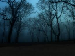 halloween forest background dark magical forest background image gallery hcpr