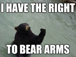 Right To Bear Arms Meme - i have the right to bear arms vengeful bear quickmeme