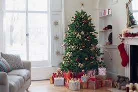 christmas tree delivery online christmas tree delivery has come to philly philadelphia