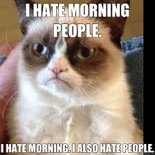 I Hate People Meme - i hate morning people i hate morning i also hate people misc