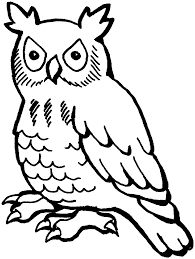 owl colouring pages for kids