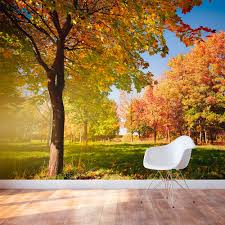 fall in the park wall mural