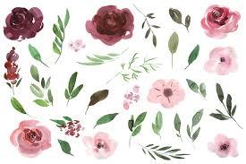 burgundy flowers watercolor pink burgundy flowers clipart by watercolorflowers