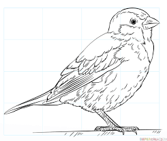 drawing a house how to draw a house sparrow step by step drawing tutorials