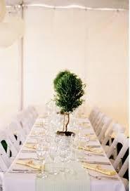 Topiaries Wedding - 38 best topiary trees images on pinterest topiaries topiary