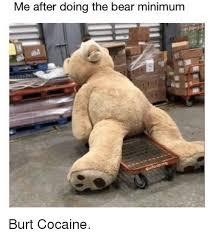Bear Cocaine Meme - me after doing the bear minimum burt cocaine meme on me me