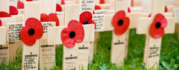 belfast field of remembrance the royal british legion
