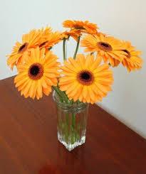 cheap flowers to send best 25 cheap flowers online ideas on craft fair
