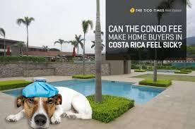 canap confo can the condo fee home buyers in costa rica feel sick the