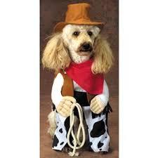 Halloween Pet Costume Rodeo Dog Halloween Pet Costume