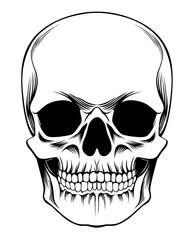 search photos skull
