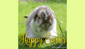 easter easter bunny 40 great happy easter gif wishes to send