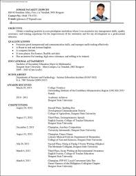 Resume Sample Format Philippines by Cv For It Professionaldoc