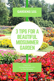 Gardening Tips For Summer - 3 tips for a beautiful midsummer garden home jobs by mom