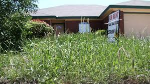 Tall Grass Landscaping by Killeen Cracking Down On Lawn Maintenance News Kdhnews Com