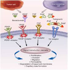 full text profile of pazopanib and its potential in the treatment