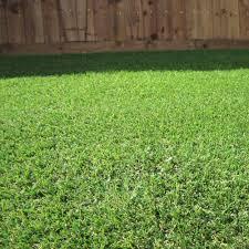 parallax badminton 25mm artificial grass 1m garden street