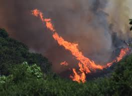 California Wildfires Rocky Fire by Wildfires Blazing Under Extreme Heat Out West Myfox8 Com