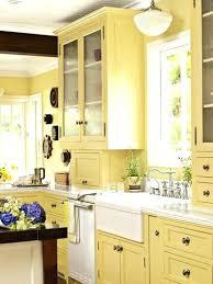 Yellow And White Kitchen Ideas Pale Yellow Kitchen Tekino Co