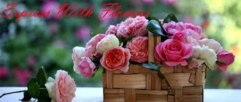 flowers to india flowers to india send gifts to india cake delivery in india ifm