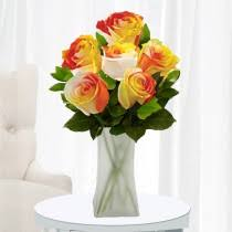 Colorful Roses World U0027s Most Colorful Roses