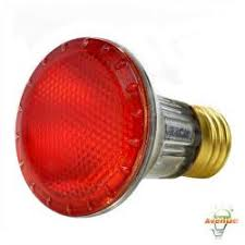 Par20 Halogen Flood Lights Par20 Halogen Lamps Halogen Lamps Light Bulbs Energy Avenue