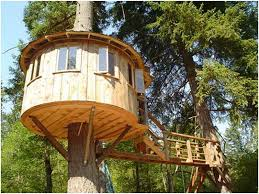 Tree House Backyard by Surprising Backyard Tree House Designs 38 About Remodel New Trends