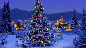 christmas tree christmas tree nature wallpaper freechristmaswallpapers net