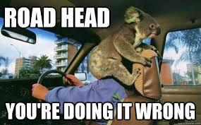 Aussie Memes - road head you re doing it wrong aussie driver quickmeme