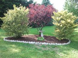 Fence Line Landscaping by 39 Best Property Line Ideas Images On Pinterest Garden Ideas