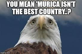 Freedom Eagle Meme - sad american eagle memes imgflip